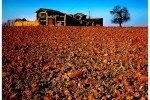 Покупатели земли понесут убытки в 2010 году
